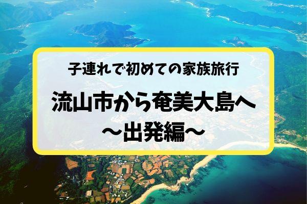 3歳&1歳の子連れ家族旅行〜成田空港から奄美大島へ出発!